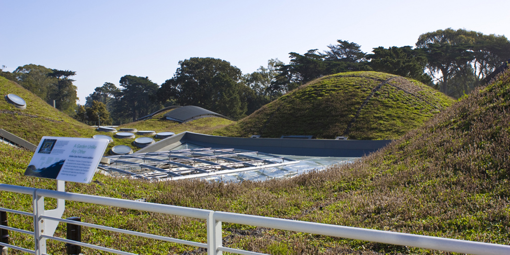 High Quality Green Roof Solutions