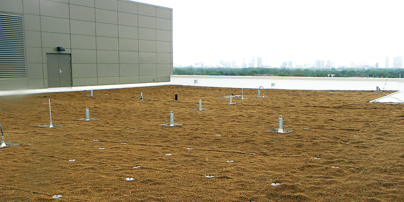 Green Roof Solutions erosion control systems to prevent wind erosion and water erosion on rooftop gardens.