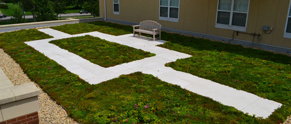 Green Roof Solutions - Intensive Roof