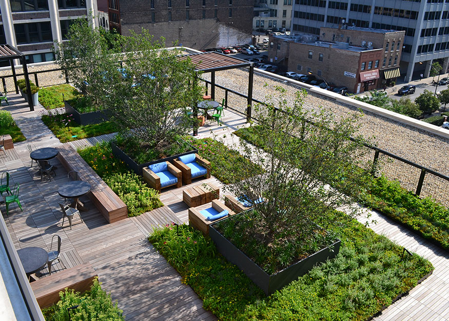 Hardscapes Projects Living Wall Products Green Roof