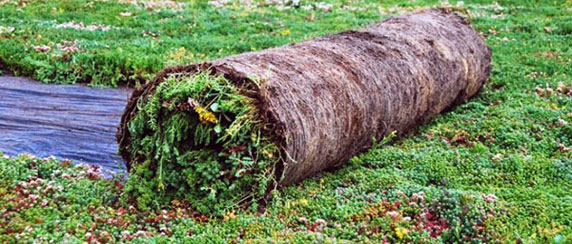 Vegetated Mats Green Roof Products Green Roof Solutions