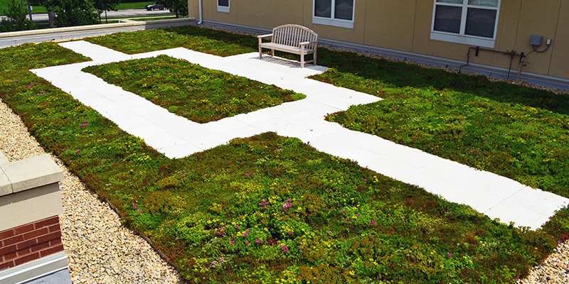 Green Roof Solutions custom edge products.