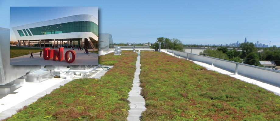 Green Roof Solutions - UNO Soccer Academy green roof