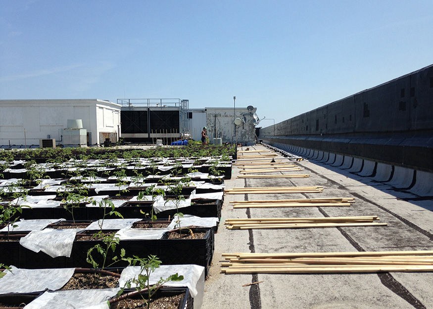 Beautiful All Products Made In The United States Unless Otherwise Noted. ©2016 Green  Roof Solutions ...